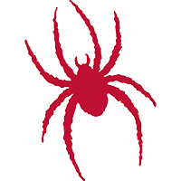 richmondspiders.com